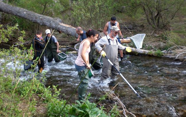 Pesca Eléctrica en el Rio Palancia